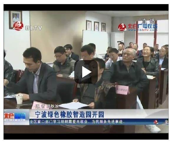 视频:宁波绿色橡胶智造园开园